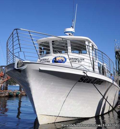MV Sea Lion in her slip - Whale Watch& Wildlife Tours April - October