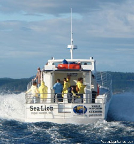 The MV Sea Lion-Movin' Out to Find The Orca