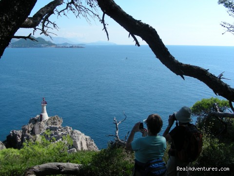 Elaphite Islands & Dubrovnik Walking Tour