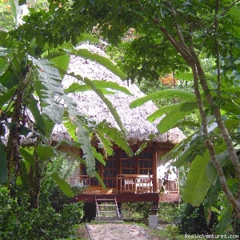 Nicobari Cottage - Barefoot at Havelock - Luxury Eco-Lodge in the Andaman Islands