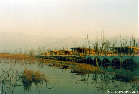 Group of Our House Boats [ Dal Lake] - Tours  Packages in India