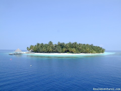 One Island One Resort - Specialized in Scuba diving, Surfing trips