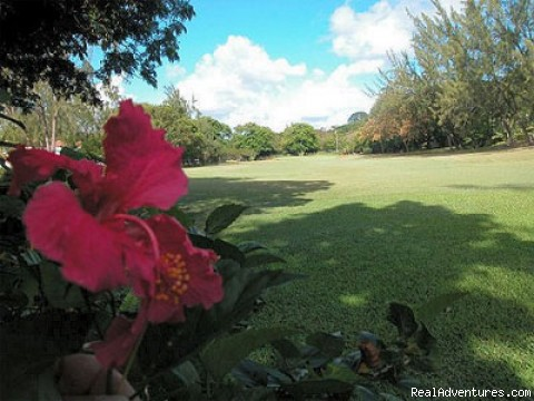 Golf Course - Barbados Vacation Rental Rockley Golf Resort