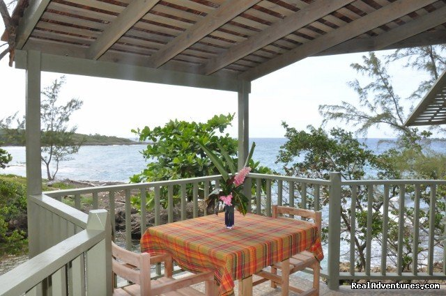 Dinner For 2 On Your Own Veranda Overlooking The Sea | Image #11/22 | Back to Eden Strawberry Fields Together Jamaica