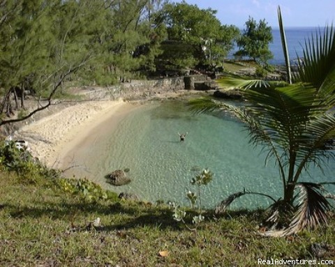 Our Private Beach Cove - Back to Eden Strawberry Fields Together Jamaica