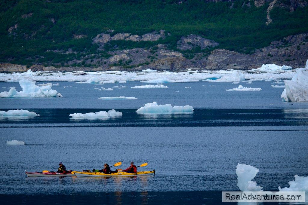 Paddle Columbia Bay | Image #9/13 | Prince William Sound Sea Kayaking and Hiking Tours