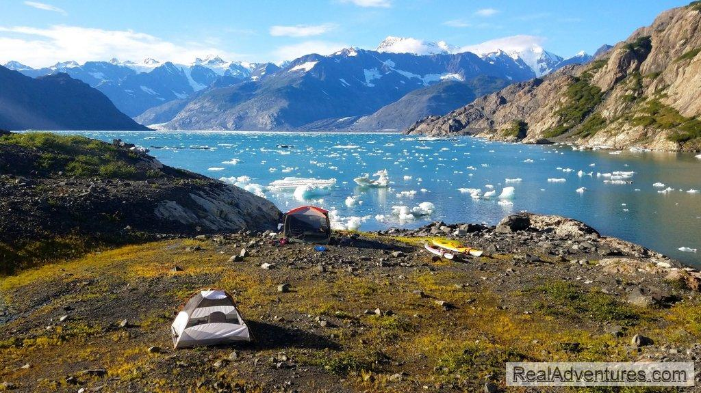 Camp Columbia Bay | Image #5/13 | Prince William Sound Sea Kayaking and Hiking Tours