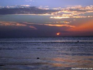 Errol's Sunset: Pirate's Paradise Negril, Jamaica Youth Hostels