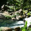 Romantic Getaway on Nature Island of Caribbean Bed & Breakfasts Belles, Dominica