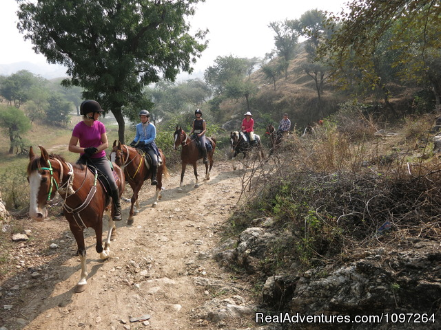 Ride through the Aravalli Mountains - Horsebacksafaris on Marwari Horses in Rajasthan