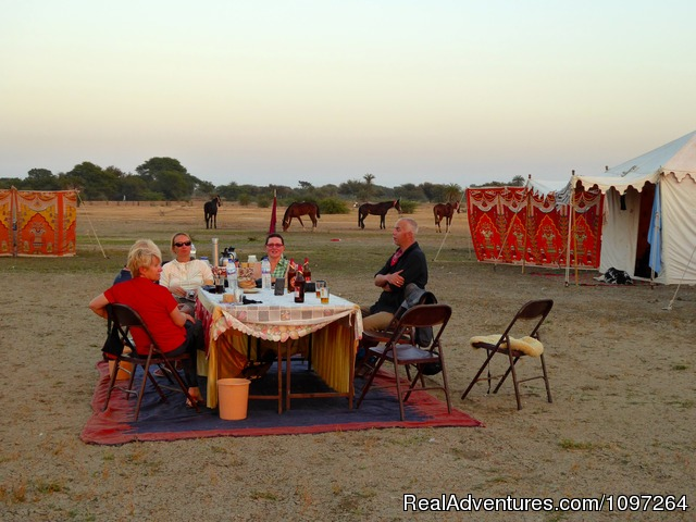 Dinner in the camp - Horsebacksafaris on Marwari Horses in Rajasthan