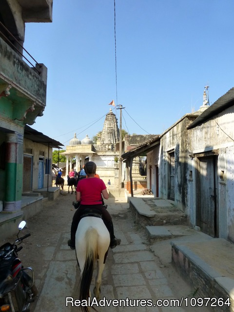 The serene landscape of the Aravallis (#16 of 26) - Horsebacksafaris on Marwari Horses in Rajasthan
