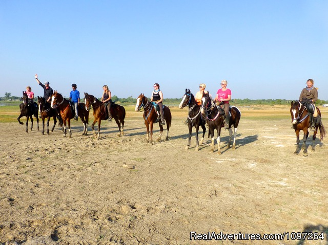 Safari Group - Horsebacksafaris on Marwari Horses in Rajasthan