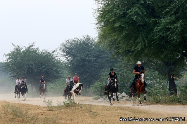 Enjoying the ride - Horsebacksafaris on Marwari Horses in Rajasthan