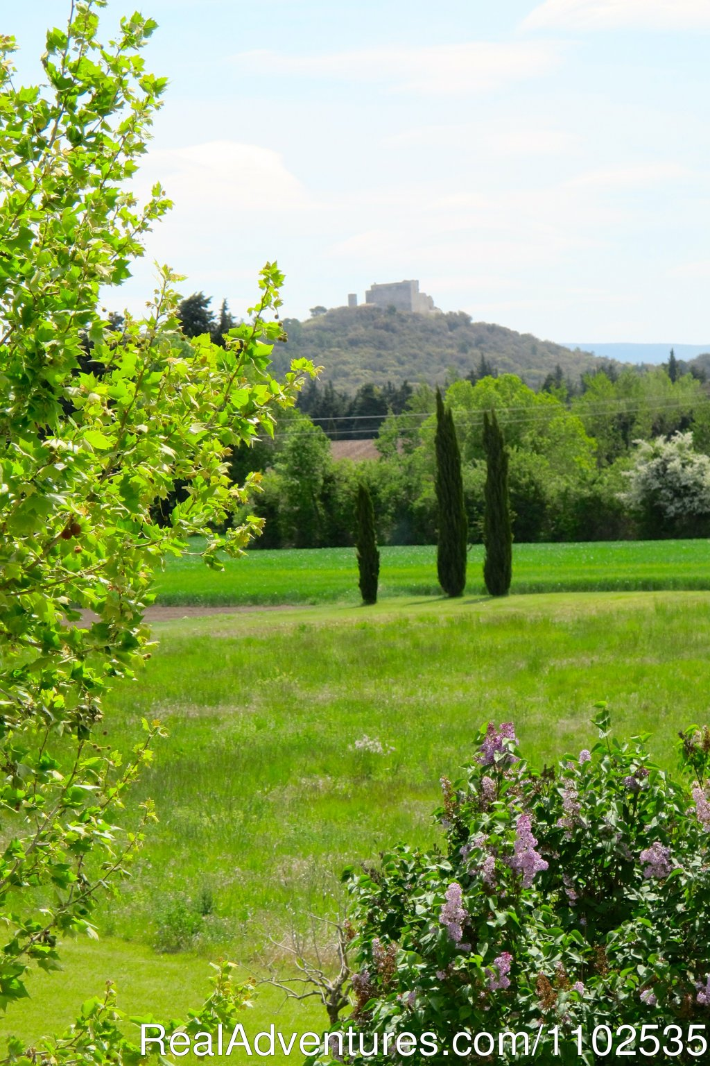 View on Thouzon Castle from the property, | Image #11/22 | Charming Holidays Rental & Guest House
