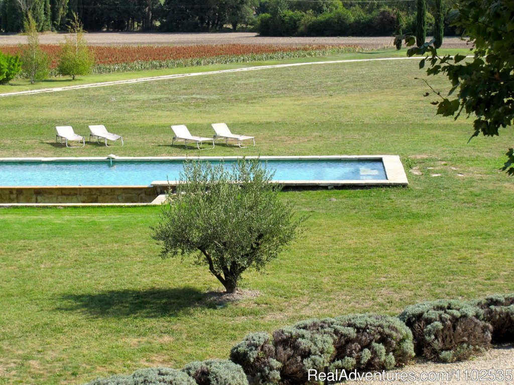 View on Swimming pool & field | Image #21/22 | Charming Holidays Rental & Guest House