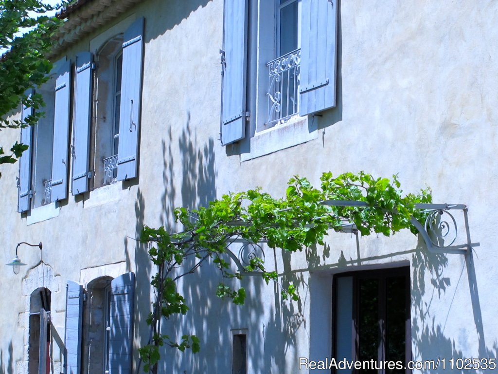 Provencal Vineyards Tonnelle | Image #22/22 | Charming Holidays Rental & Guest House