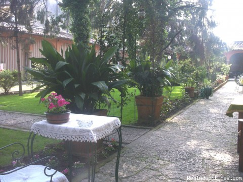 The Garden - Your home away from home near Lake Garda