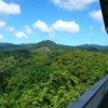 Panoramic View Of The Atlantic  And Rain Forest