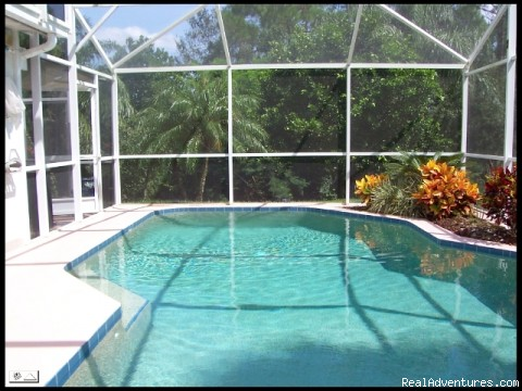 pool - Florida Near Disney World a Lovely 3 Bd Pool Home