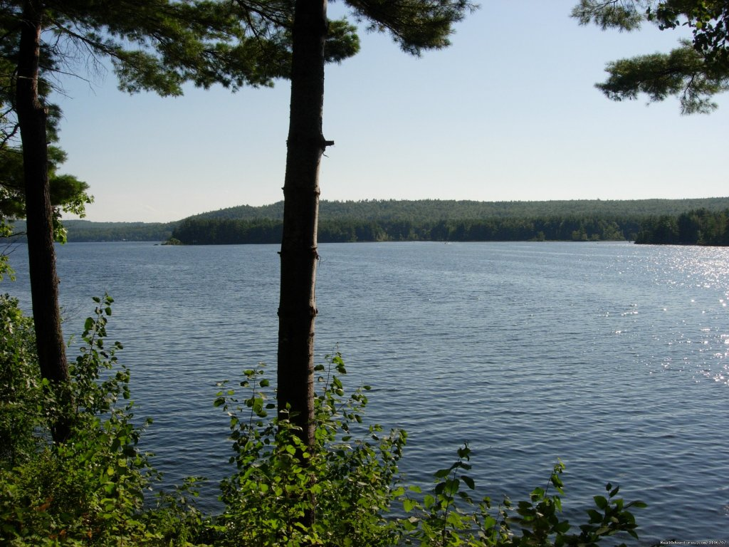 This is view from front of cottage | Image #2/14 | Quiet Waterfront Thompson Lake, ME
