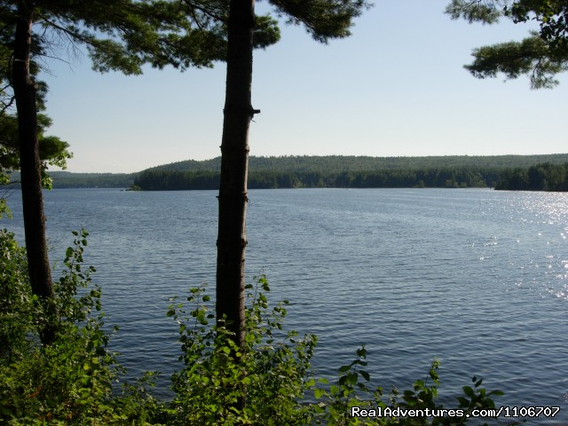 This is view from front of cottage - Quiet Waterfront Thompson Lake, ME