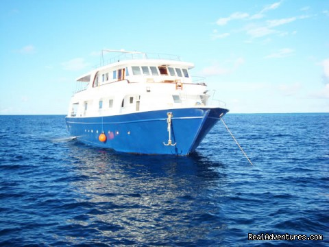 Aathy-Maldives Travel Cruise Pvt Ltd