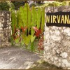 Nirvana On The Beach, Negril Jamaica