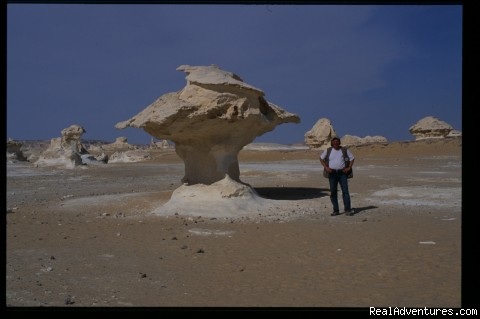Wonderful white desert, by marvelous egypt travel - PRIVATE & Taylor-made travel in Egypt