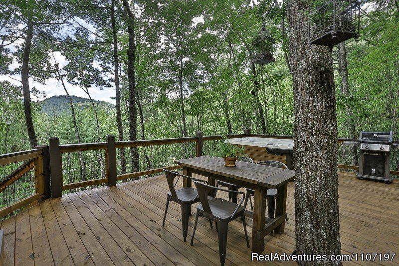Aska Retreat - 1BR/2BA pet-friendly cabin | Image #2/26 | Amazing accommodations in the North Ga Mountains