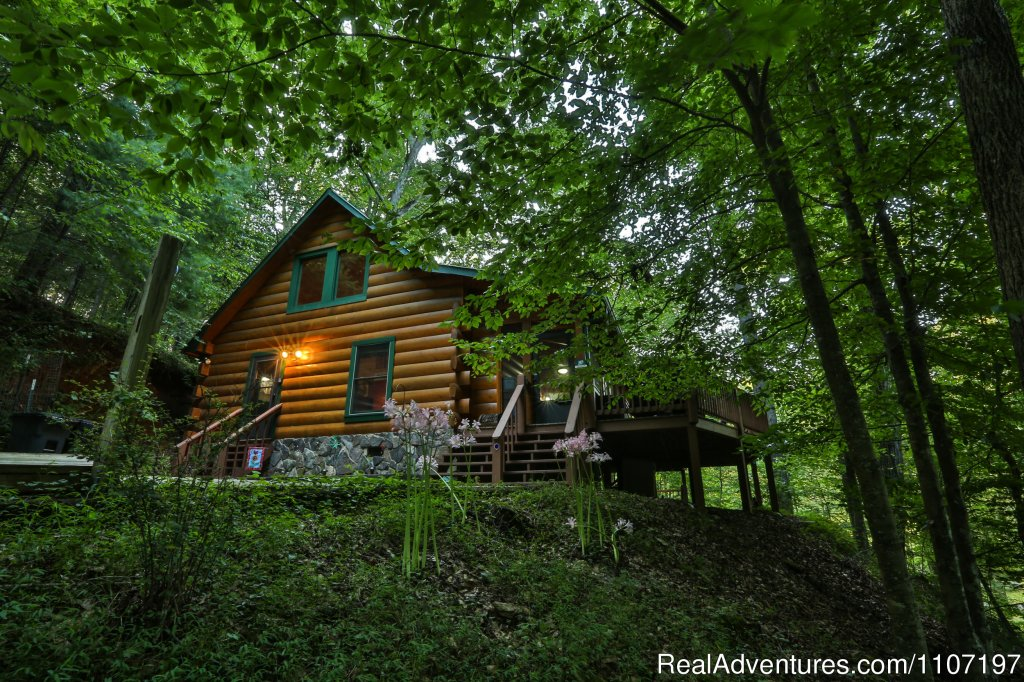 Jesse's Place - 2BR/2BA not pet-friendly | Image #3/26 | Amazing accommodations in the North Ga Mountains