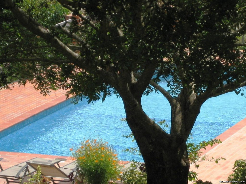 Swimming pool | Image #5/22 | Cabins/Cottages for Rent in Altos del Maria