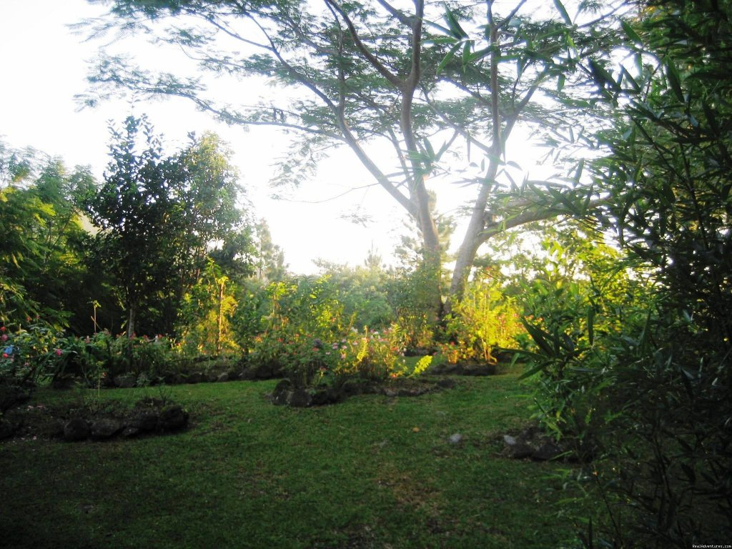 Garden Views Of Cabins | Image #17/22 | Cabins/Cottages for Rent in Altos del Maria