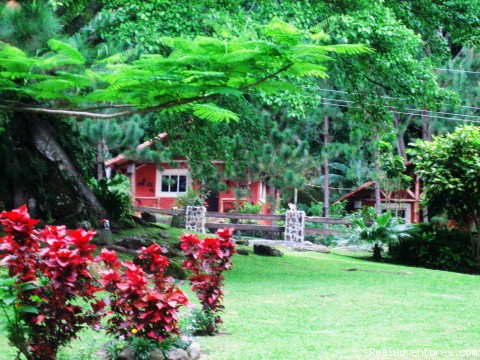 View to cabins - Cabins/Cottages for Rent in Altos del Maria