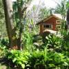 Cabin Gardens