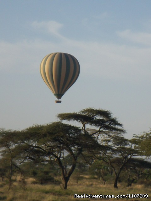 Balloon Safari Experience in Serengeti Park - World Tours And Safaris Tanzania