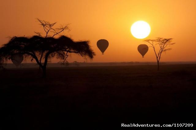 Ballooning In Serengeti (#18 of 26) - World Tours And Safaris Tanzania
