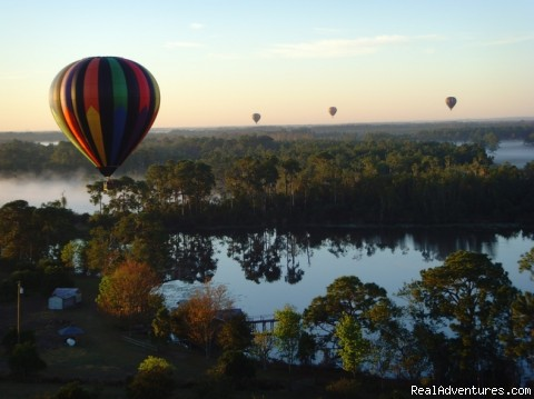 Mist in the trees - Disney Area Balloon Rides with Thompson Aire Inc.