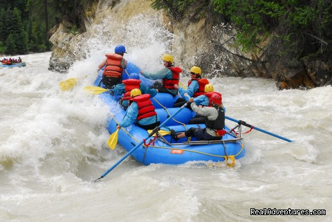 From Mild to Wild - Whitewater Rafting on the Kicking Horse River