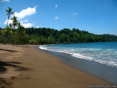 A beach to yourself | Image #3/3 | Educational Travel in the Osa Peninsula,Costa Rica