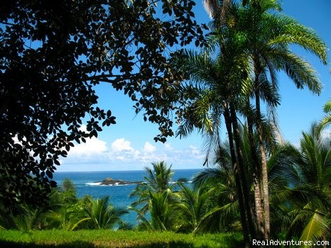 Beautiful views - Educational Travel in the Osa Peninsula,Costa Rica