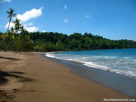 A beach to yourself - Educational Travel in the Osa Peninsula,Costa Rica