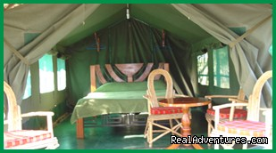 Budget tented Camp  - Kenya Wildlife Safaris Road & Air Packages