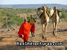 Samburu led camel safari - Kenya Wildlife Safaris Road & Air Packages