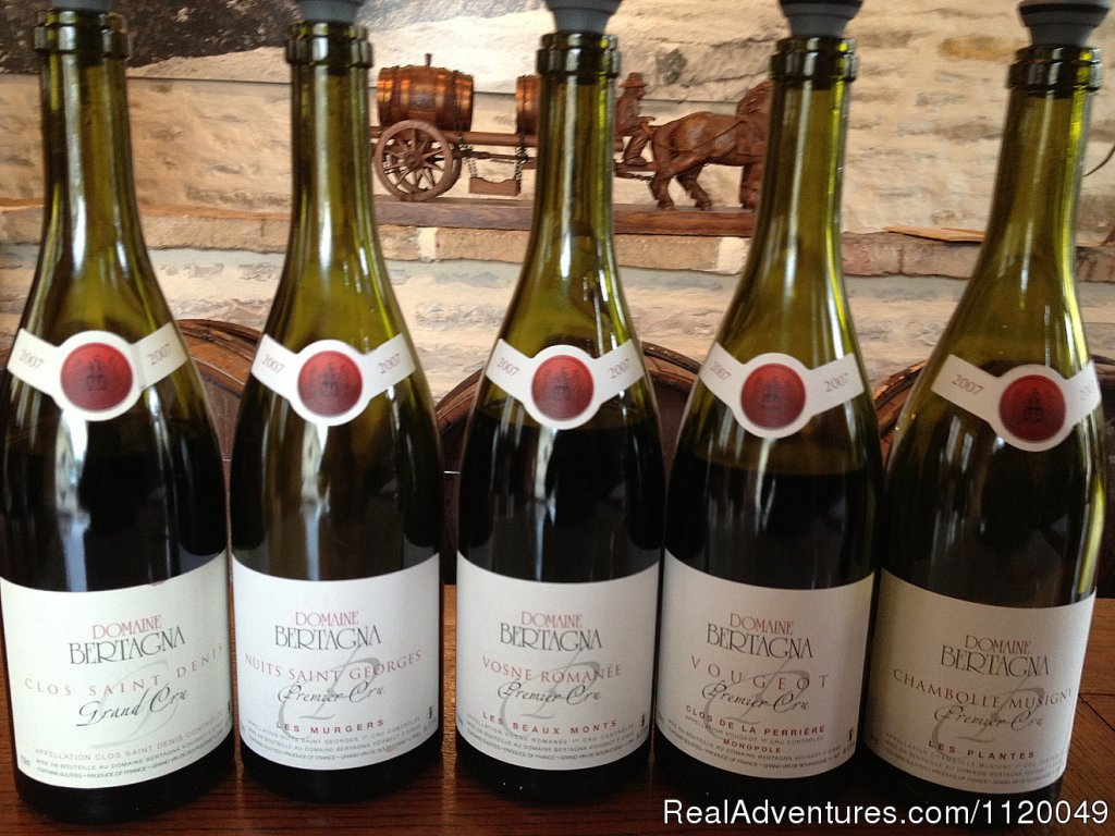 Pinot Noir - Premier and Grand Crus from Cote de Nuits | Image #8/13 | Fabulous Wine and Food Tours in Burgundy