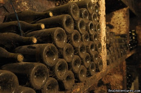 Dusty bottles in wine cellar | Image #6/13 | Fabulous Wine and Food Tours in Burgundy