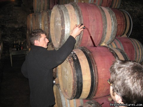 Young winemaker in Cote de Nuits