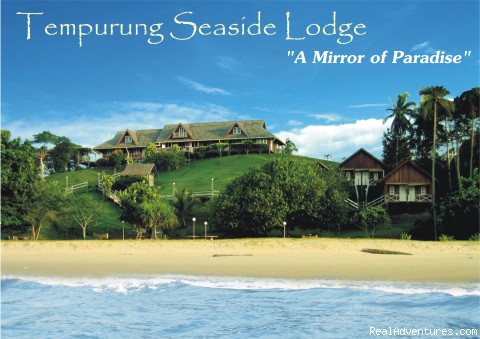 Tempurung Seaside Lodge where dreams comes alive