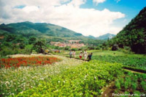 travel with CAPTOUR: sapa