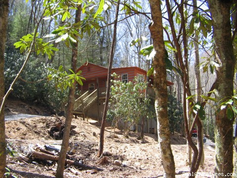 Premier Trout Fishing And Cabin Rentals In N.C.: Cabin #2